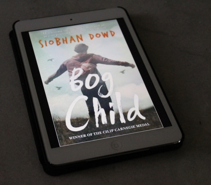 My Thoughts on Bog Child by Siobhan Dowd.