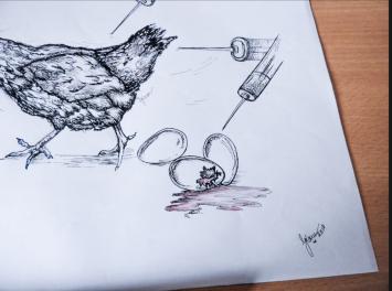 Sketch1